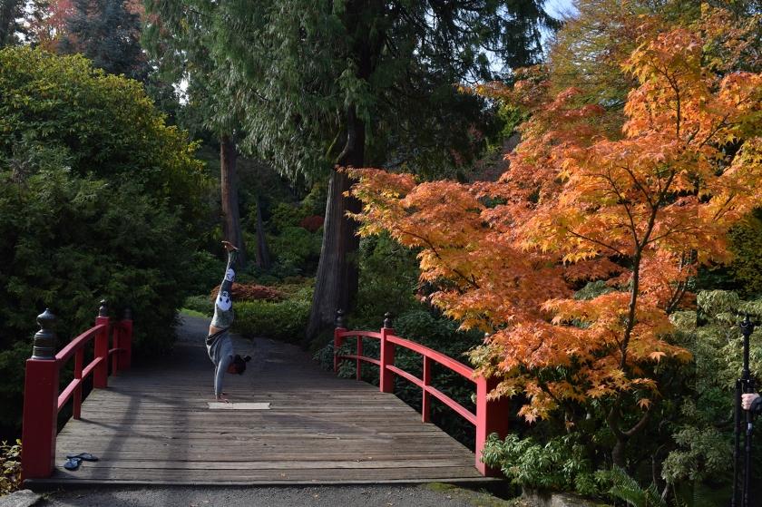 werkshop handstand zen garden.jpg